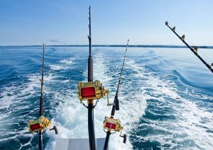 Trolling Fishing Galveston